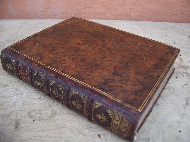 Imagen DAPHNE Y CLOE 1757 490