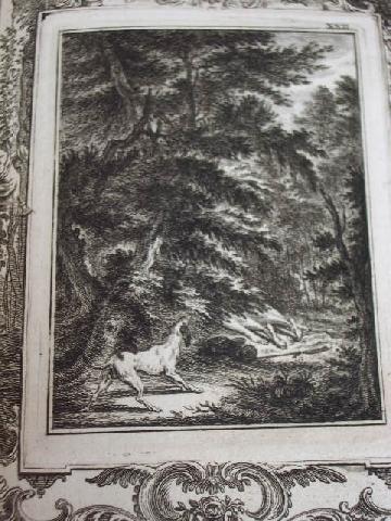 Imagen DAPHNE Y CLOE 1757 494
